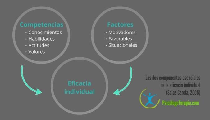 Los dos componentes esenciales de la eficacia individual (Salas Carola, 2006)